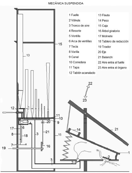 Órgano - Mecánica Suspendida